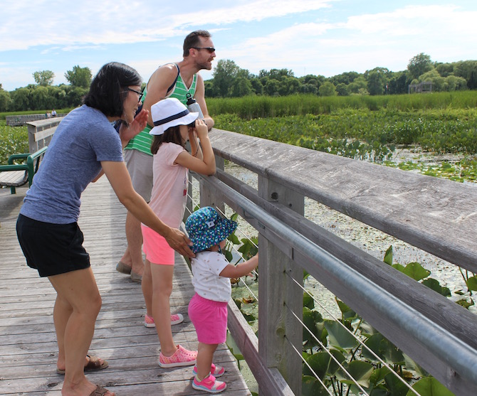nature, park, Windsor, Ontario