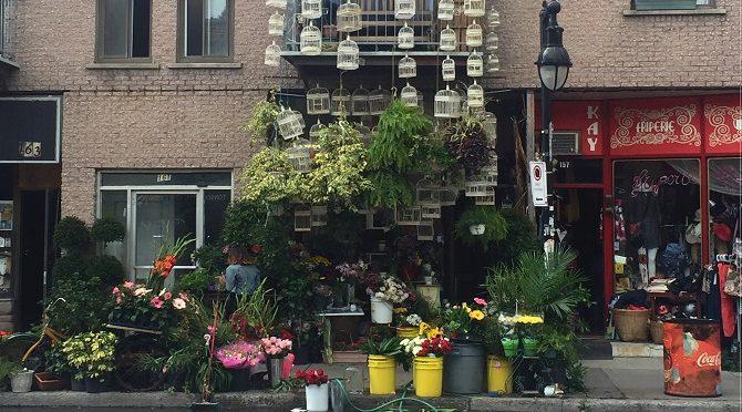 Quoi faire à Montréal : découvrir le Plateau Mont-Royal
