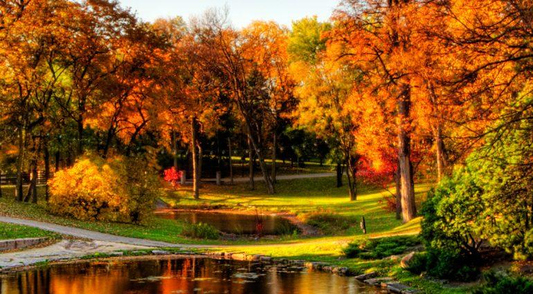 Winnipeg vous attend : Où aller en octobre pour célébrer Canada 150